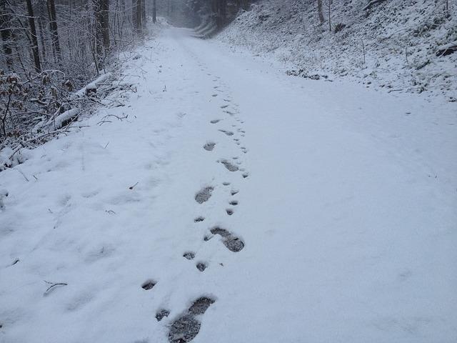 Doctor Walks Six Miles in Snow to Perform Life-Saving Brain Surgery
